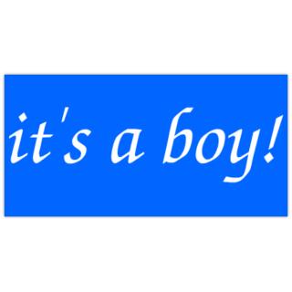 It_39_s+a+Boy+Banner
