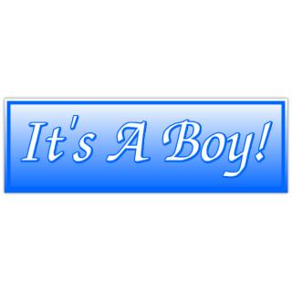 It_39_s+A+Boy+Banner+2