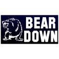 Bear Down Banner