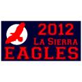 Eagles Sports Banner