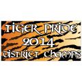 Tiger Championship Banner