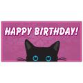 Birthday Banner 109