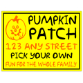 Pumpkin Patch 101
