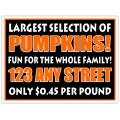 Pumpkin Patch 103