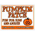 Pumpkin Patch 104